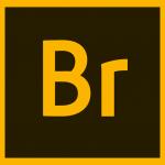 Adobe Bridge CC 2020 v10 + Crack Download