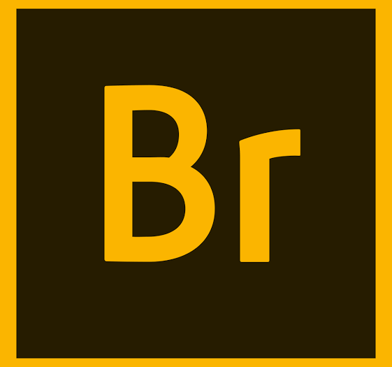 Adobe Bridge CC 2020 v10 + Crack Download